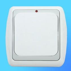 Выключатель 1 СП С16-003 АБС бел./сер. рамка со световым индикатором (Ростов)