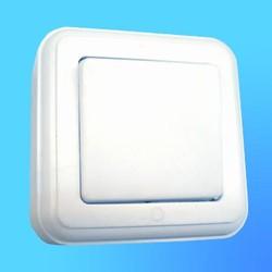 Выключатель 1 ОП А1-077-10 с больш.кл. (Полтава)