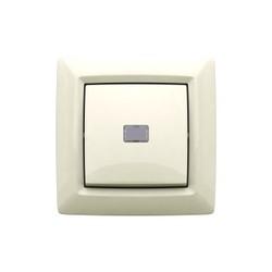 Выключатель с ручным и дистанционным управлением скрытой установки, цвет белый