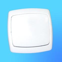 Выключатель 1 СП С1-10-145 АБС с больш.кл. (Полтава)