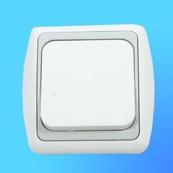 Выключатель 1 СП С16-002 АБС бел./серая рамка (Ростов)
