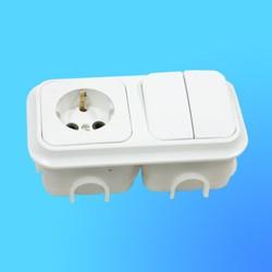Блок 2В-РЦ-007 СП (2-кл.выкл.+ евророзетка) АБС с монтажной коробкой (Пинск)