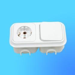 Блок В-РЦ-006 СП (1-кл.выкл.+ евророзетка) АБС с монтажной коробкой (Пинск)