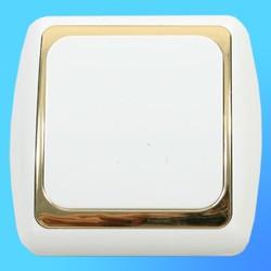 Выключатель 1 СП С1 10-002 АБС бел./зол. рамка 10А (Ростов)