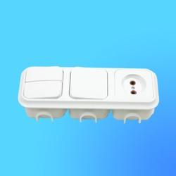 Блок 3В-РЦ-005 СП (1-кл.выкл.+ 2-кл.выкл.+розетка) АБС с монтажной коробкой (Пинск)
