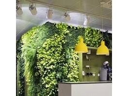 Компания «Эксис» создала комплексное решение «Зеленый офис»