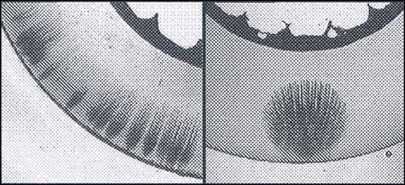 Развитие водных триингов в изоляции кабеля