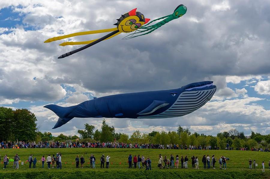 Фестиваль воздушных змеев в царицыно 2018 когда
